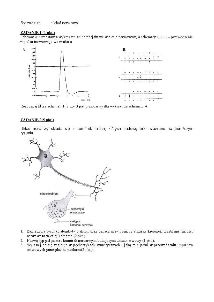 układ krążenia sprawdzian pdf